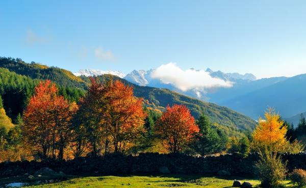 雪山映红叶 宝兴赏秋正当时