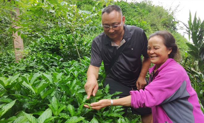运用农技知识  助力群众奔康