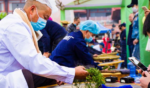 传承制茶工匠精神 推动高山绿色茶产业发展